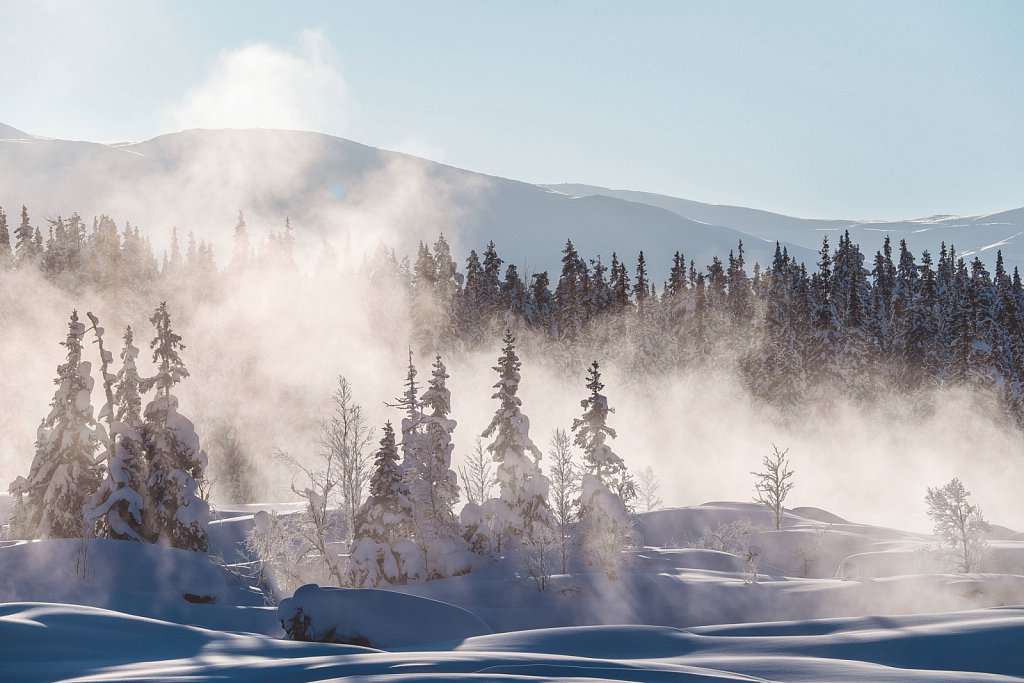 .::Lappland 2015::.